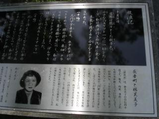 misaki11